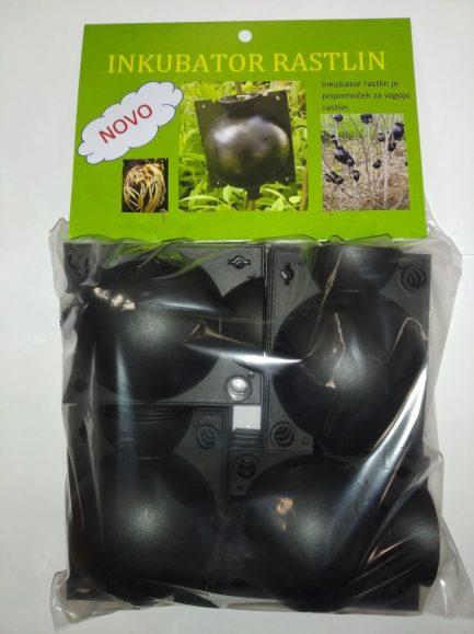 Inkubator rastlin